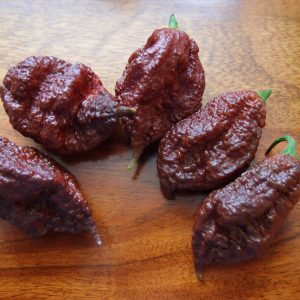 Grow Chillies, buy UK chilli seeds, super hot pepper seed